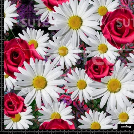 P492 snake daisy
