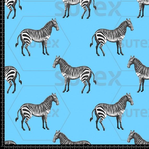 R3941 Zebra Ilustrada