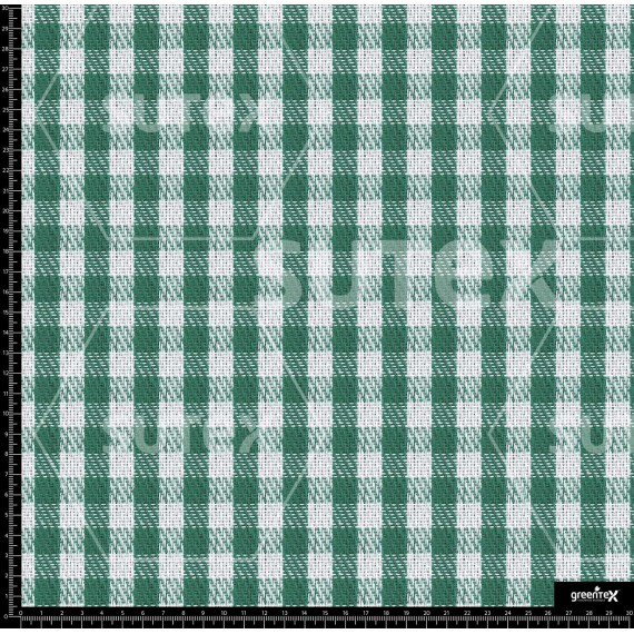 B4202_GINGHAM_SMALL_GREEN