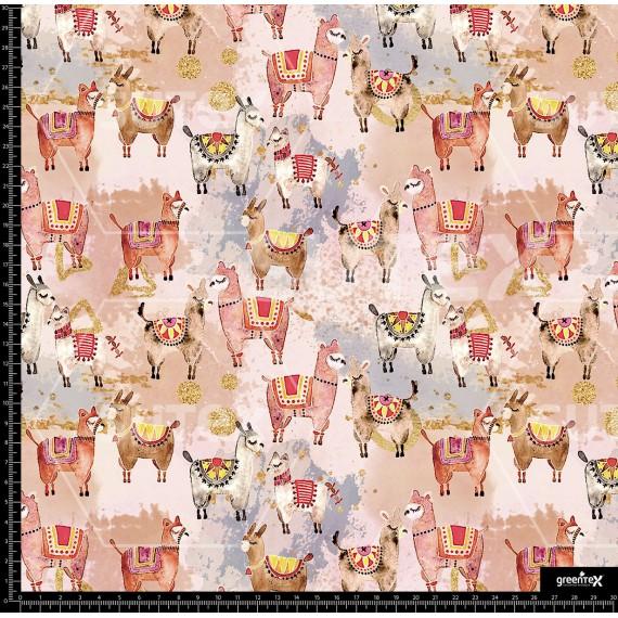 107578 Alpacas R