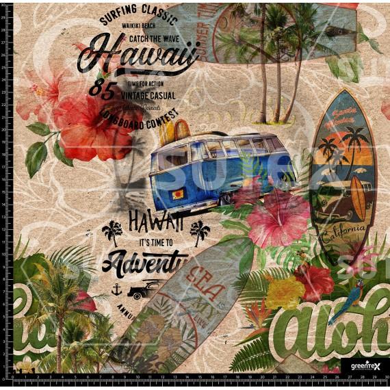 107673 Aloha Vintage