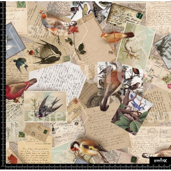 110068 Postales Birds Vintage R