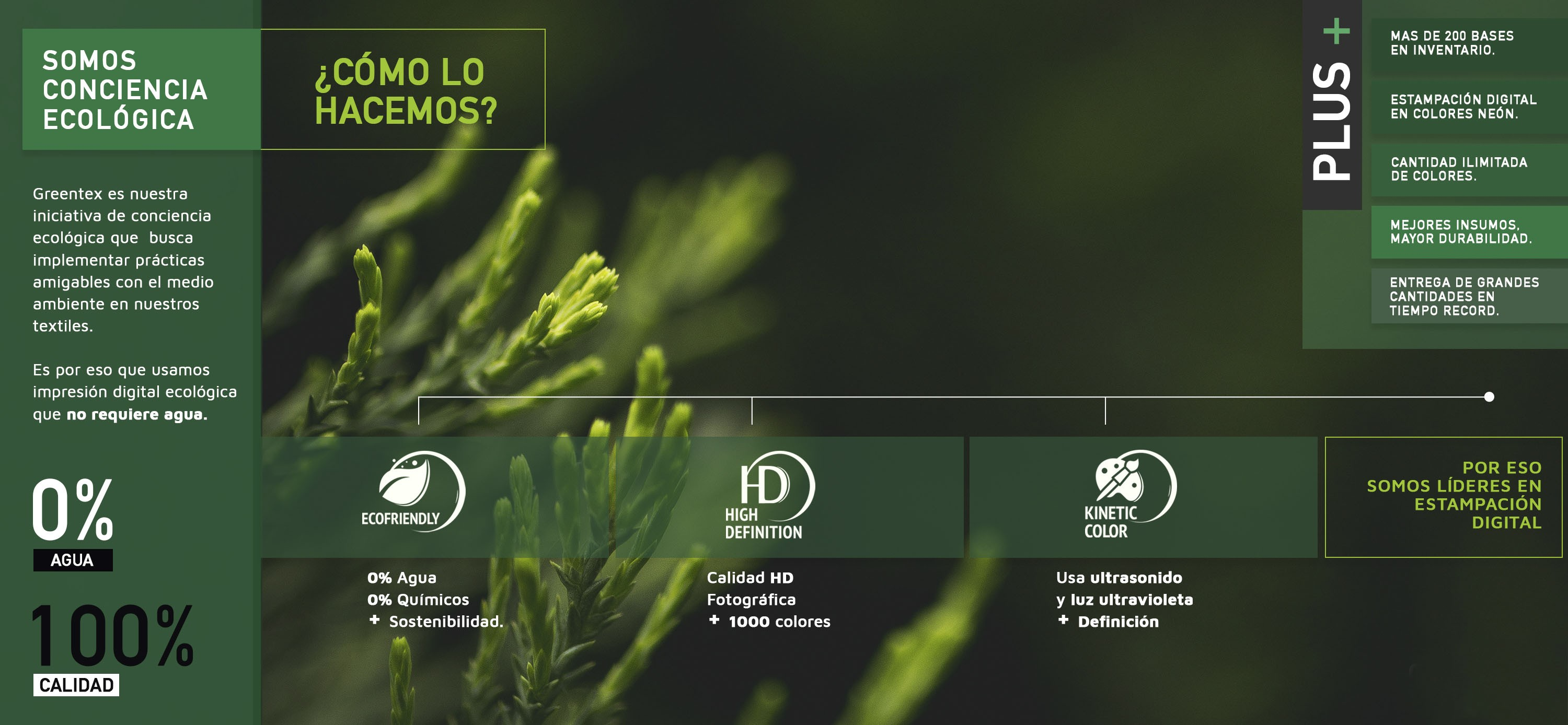 INFOGRAFIA GREENTEX